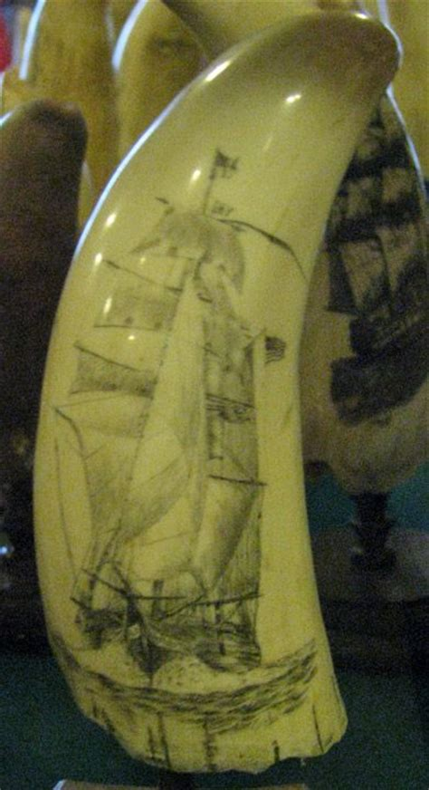 scrimshaw an form travel photos by galen r 1000 images about scrimshaw on