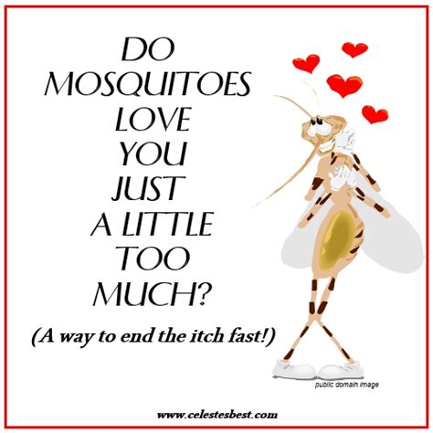 allergic reaction to mosquito bites the secret to