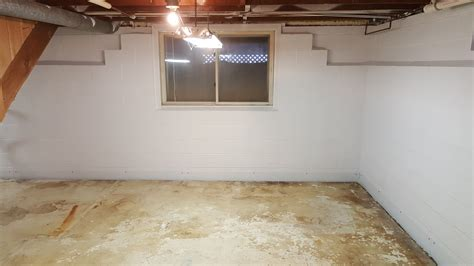 mold in basement mold removal mildew removal rochester buffalo