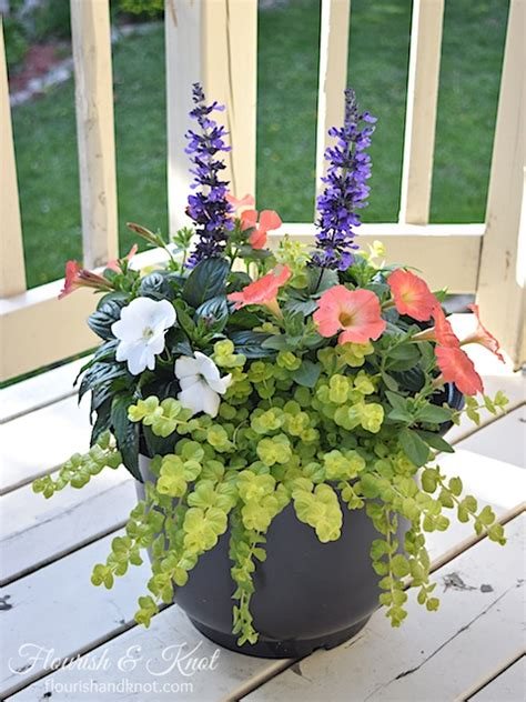 beautiful container garden design pretty planters