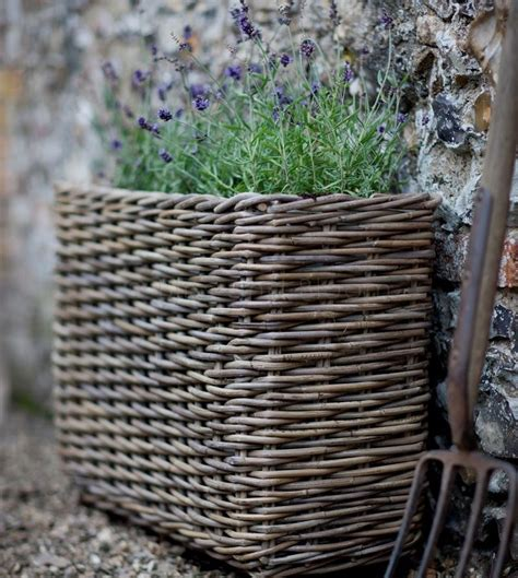 Willow Planters Uk willow planter bliss and bloom ltd
