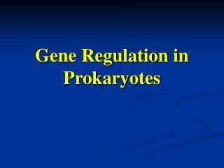 section 12 5 gene regulation ppt gene regulation section 12 5 powerpoint presentation