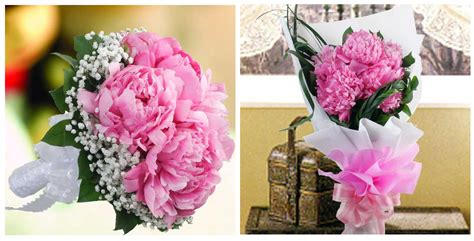 best florist near me peony flower delivery singapore 4k wallpapers
