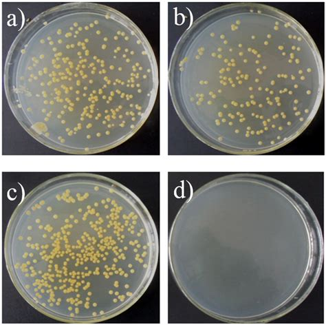 mrsa c section materials free full text antibacterial modification of