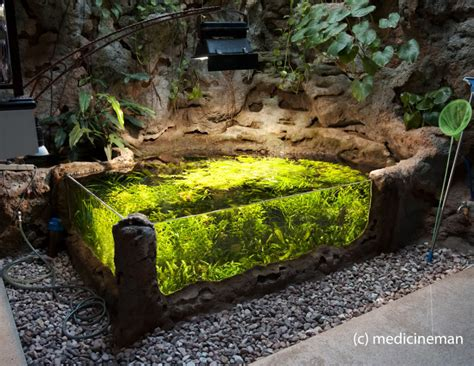 indoor pond amazing 700g indoor sunken pond akv 225 rium pinterest