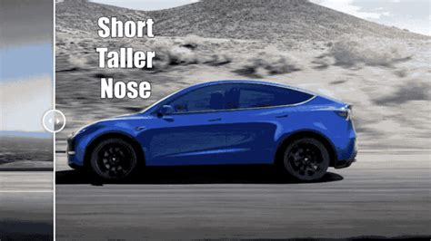 2020 Tesla Model 3 by Visual Comparison 2020 Tesla Model Y Vs 2019 Tesla Model