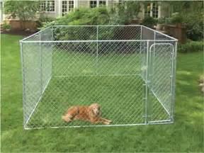 Charming 10x10 Dog Kennel #8: HBK11-10977.jpg