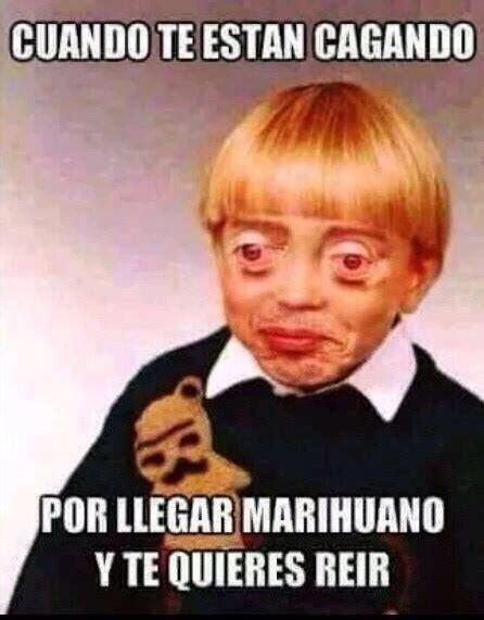 Memes De Marihuanos - memes de marihuanos 28 images las locuras que tiene