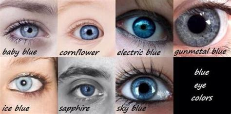 different types of eye colors types of blue proprofs quiz