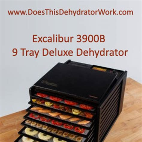 dehydrator the best food dehydrator
