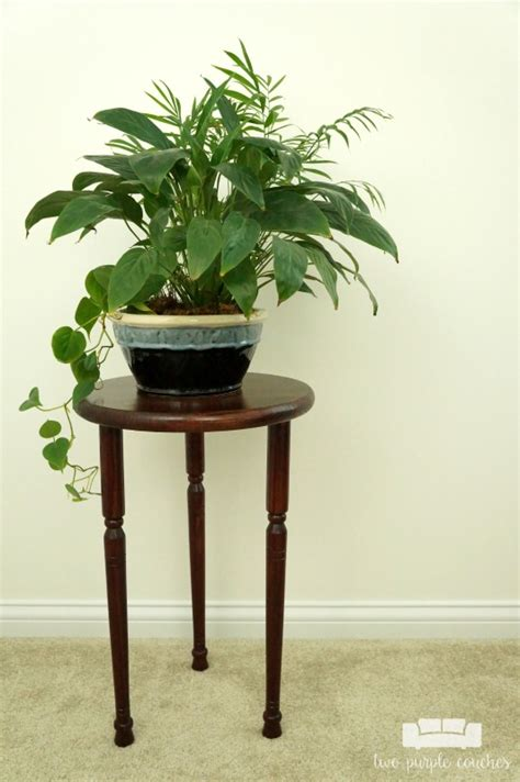 how to build a plant stand two purple couches