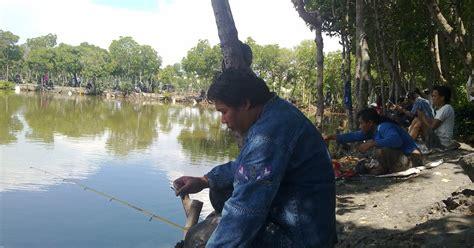 cara buat umpan ikan mas di air hijau dengan cara dan panduan kita belajar dengan cara kita