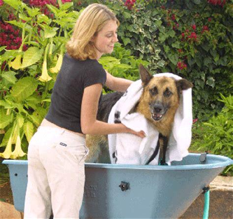 dog bathtubs for home use booster bath the original dog wash tubs 4 home use