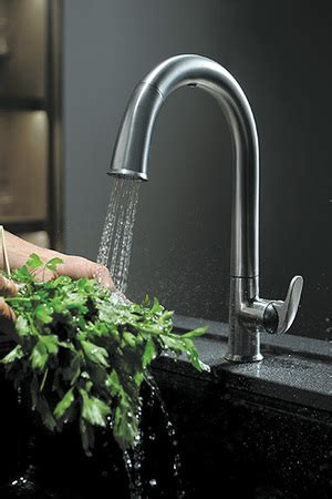 Kitchen Faucets Seattle by Add A Technology To Your Kitchen Sink The Seattle