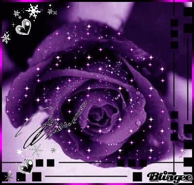 Roza Picture