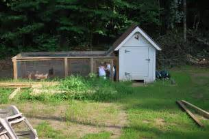 diy backyard chickens the coop from scratch club
