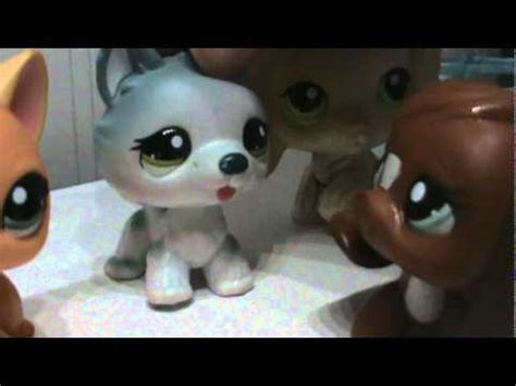 lps dogs and cats lps cats and dogs part 4