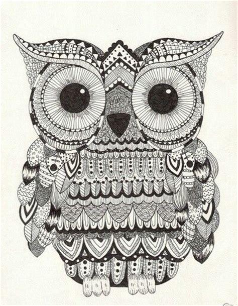 doodle owl serious owl doodle zentangle