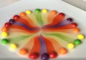skittles color science fair project skittles science experiment for crafty morning