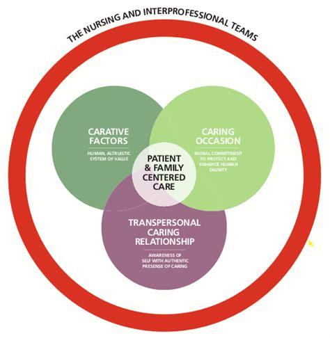 synergy model nursing theory professional development rush oak park hospital
