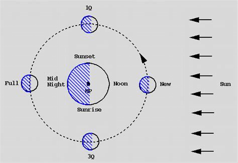 diagram of sun moon and earth sun moon earth orbit pics about space