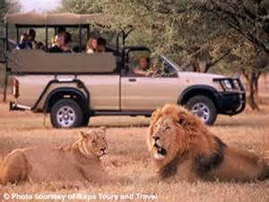 Full day pilanesberg national park safari johannesburg nomaders com
