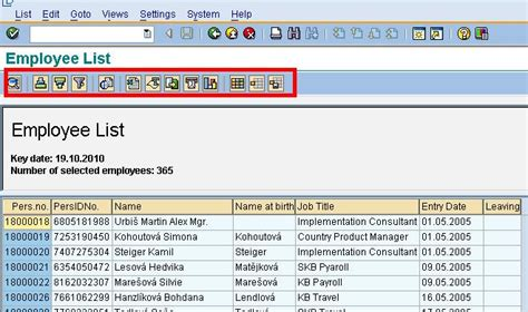 layout sap report how to execute sap reports