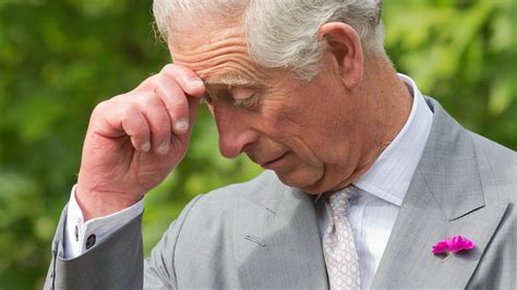 prince charles the passions and paradoxes of an improbable books books prince charles the passions and paradoxes of an