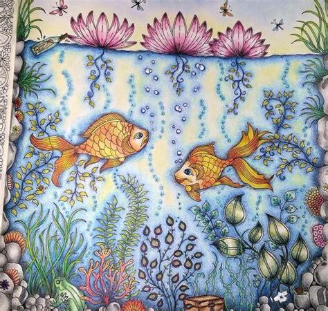 secret garden colouring book fishpond 26 best fish secret garden peixe jardim secreto images on