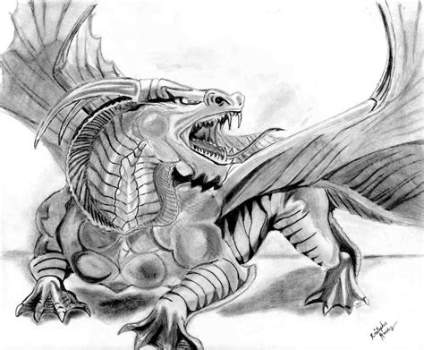 the best drawings of dragons realistic dragon drawings design trends premium psd