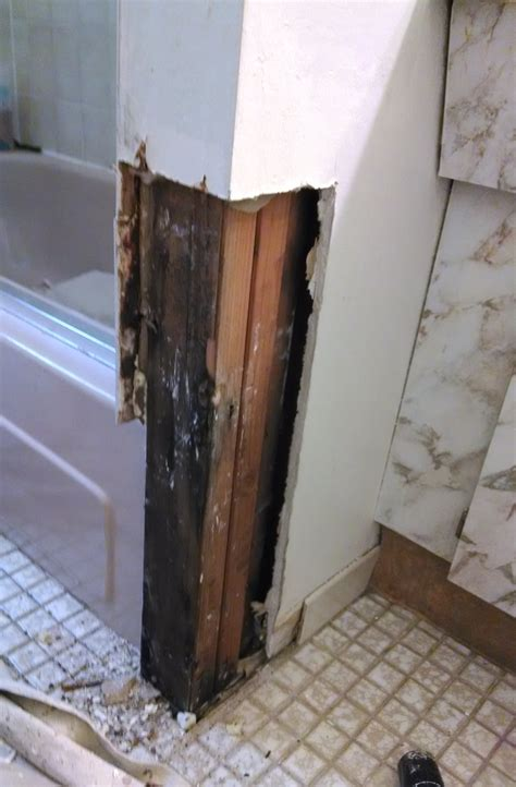 remove mold from walls in bathroom how to remove mold from bathroom walls entrancing how to