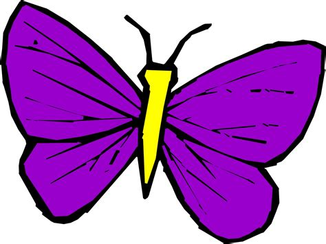 News Butterfly Butterfly Cartoon Images Of Animated Butterflies