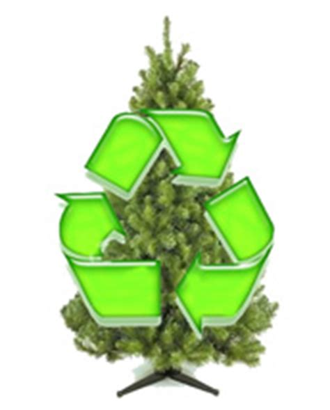 northern recycling and waste services for the town of paradise