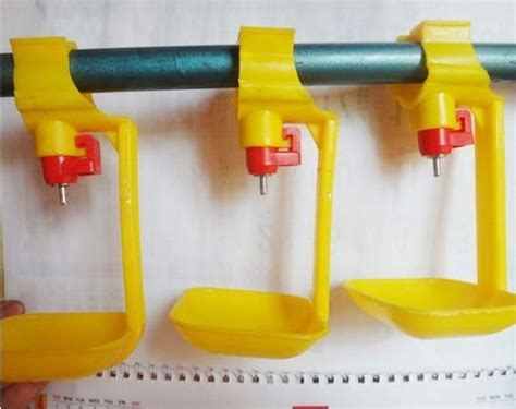 Alat Peternakan 5pcs Chicken Duck Hen In Poultry Water D 5pcs yellow farm steel hanging cup with automatic chicken duck water drinker poultry