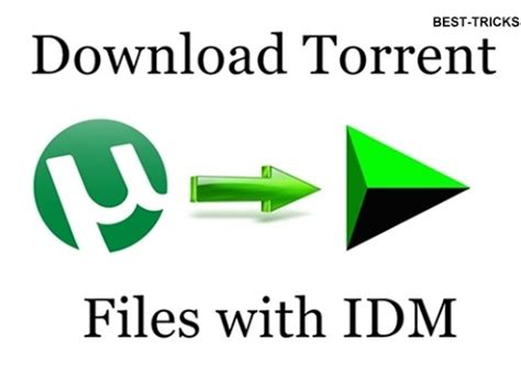 download youtube with idm how to download torrent files with idm internet download