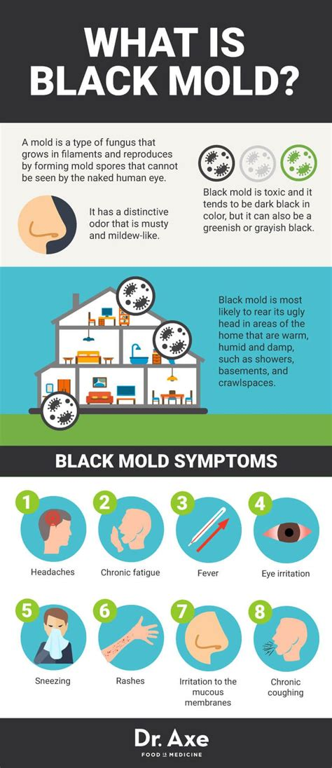 Mold Detox Symptoms by 8 Signs You Need A Black Mold Detox Health Problems Axe