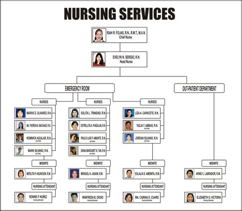 hospital organizational chart hospital organizational chart newhairstylesformen2014