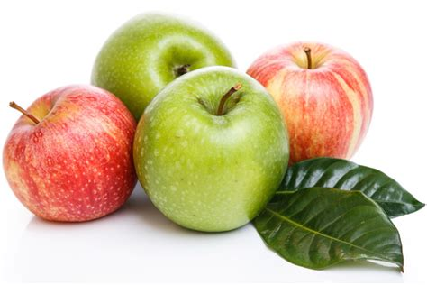 can dogs eat apple skin can dogs eat apples pet food society