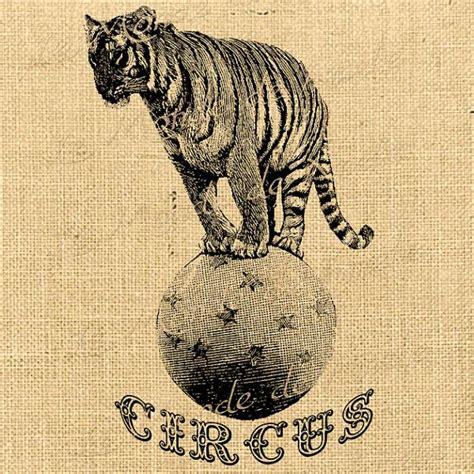 vintage circus tiger