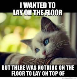 Kitty Cat Meme - first world kitty problems weknowmemes
