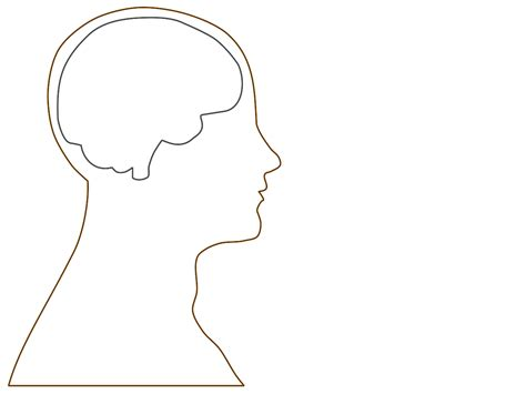 brain template outline of brain template clipart best