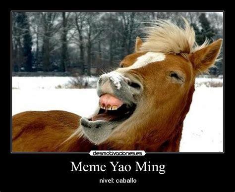 memes de caballos imagenes chistosas memes de caballos imagenes chistosas