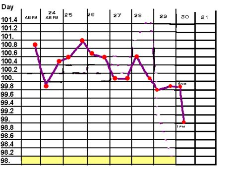 puppy temperature whelping temperature chart breeds picture
