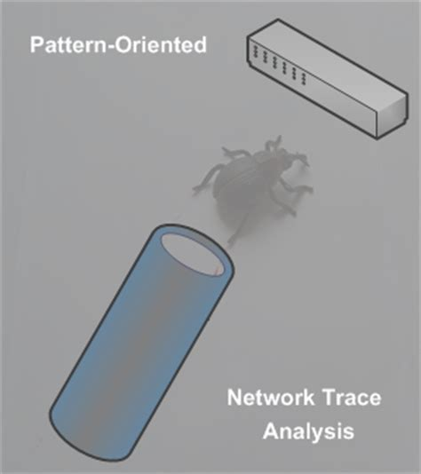 pattern analysis network forthcoming free webinar pattern oriented network trace