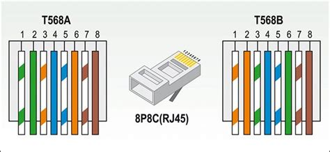 rj45 color order how to crimp your own custom ethernet cables of any length