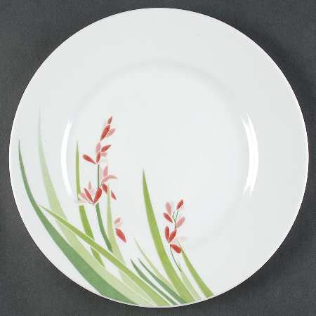 corning spring pond corelle at replacements ltd corning china at replacements ltd page 8