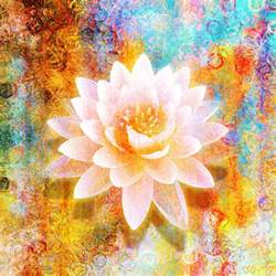 Abstract Lotus Flower Abstract Sacred Archives Cianelli Studios
