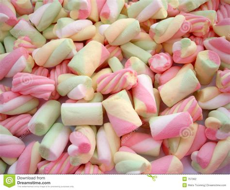 marshmello pics marshmallow stock photo image of cocoa treat sugar