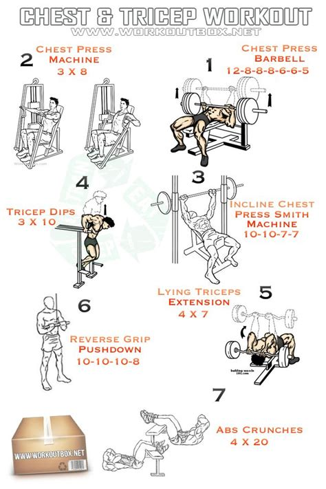 10 best images about chest and tricep workouts on