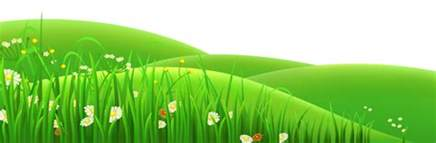 Free Pictures Of Flowers To Download - grass field cliparts free download clip art free clip